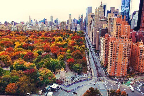 ny-in-the-fall