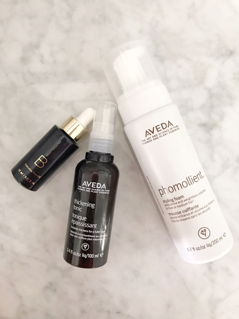 Aveda Phomollient- Aveda Hair Care Review
